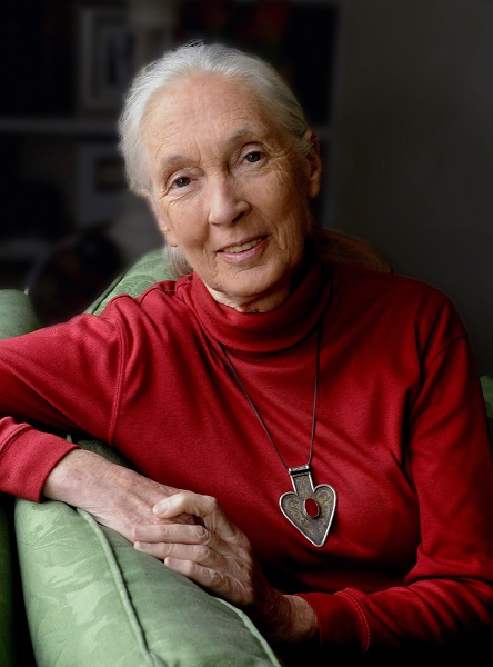 Dr. Jane Goodall, DBE, UN Messenger of Peace photo by Stuart Clarke