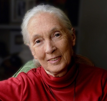 2020 SES LIFETIME ACHIEVEMENT DR JANE GOODALL DBE